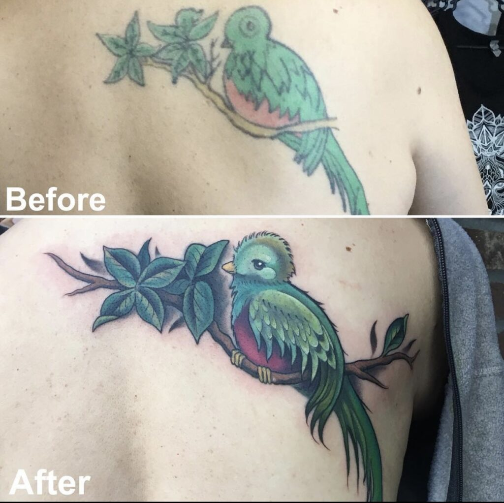 Quetzal | Cover-up Tattoo