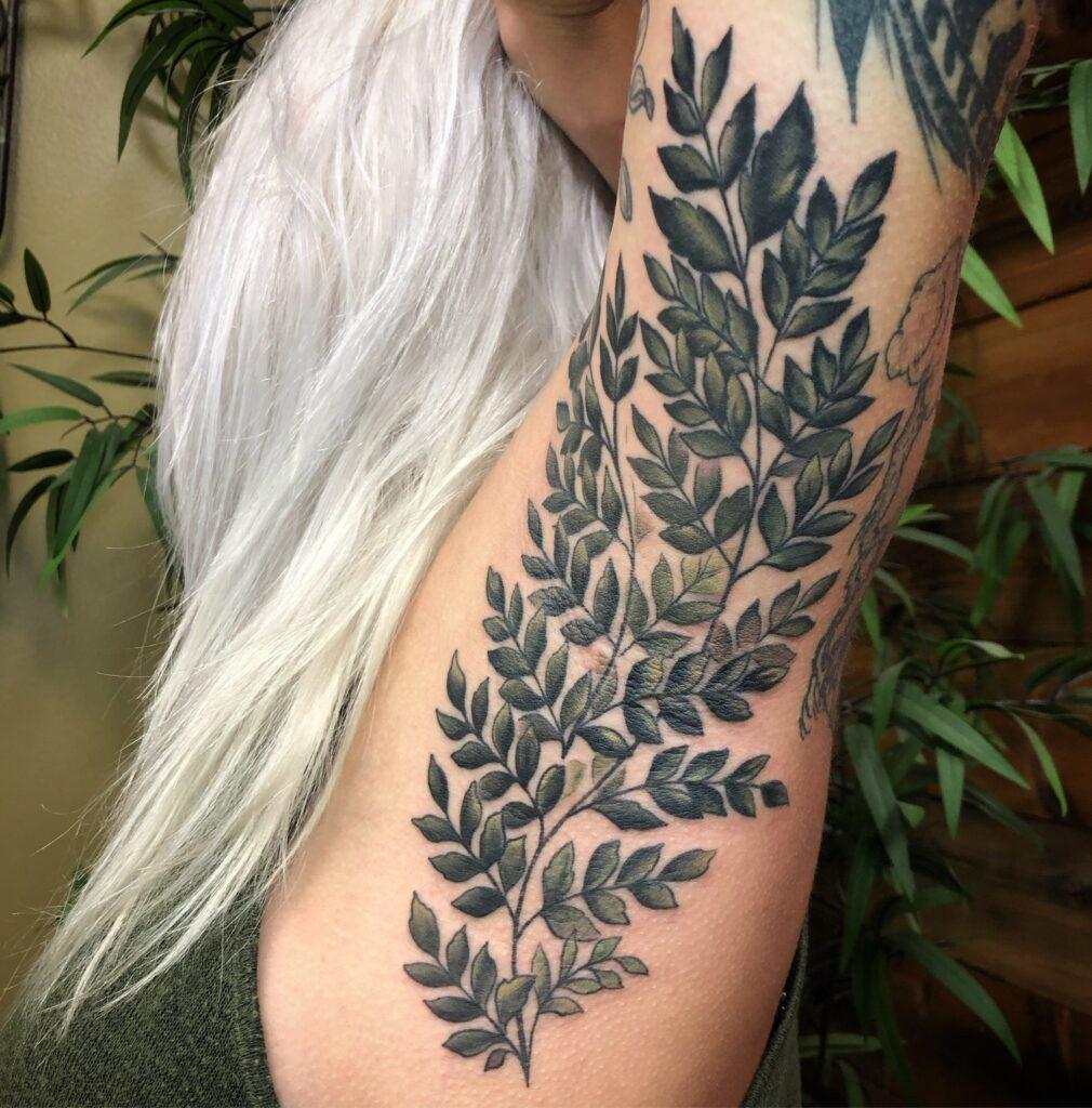 Pit Fern | Tattoo